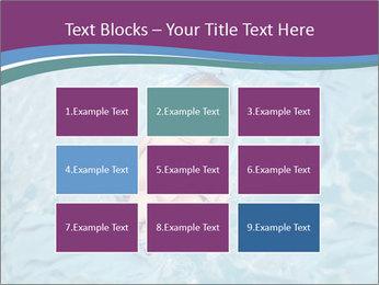 0000072973 PowerPoint Templates - Slide 68