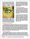 0000072977 Word Template - Page 4
