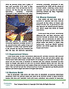 0000072983 Word Templates - Page 4