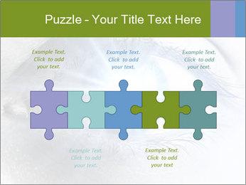 0000072991 PowerPoint Template - Slide 41