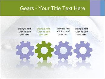 0000072991 PowerPoint Template - Slide 48
