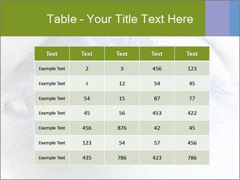 0000072991 PowerPoint Template - Slide 55