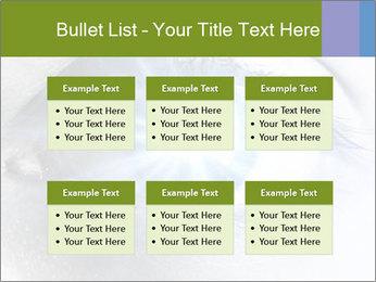 0000072991 PowerPoint Template - Slide 56