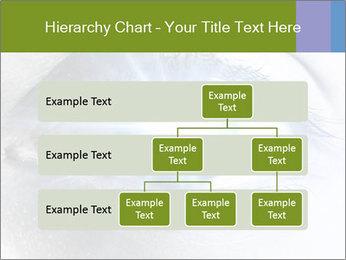 0000072991 PowerPoint Template - Slide 67