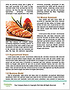 0000072995 Word Template - Page 4