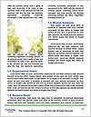 0000072996 Word Template - Page 4