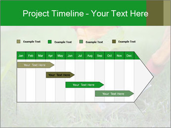 0000073012 PowerPoint Template - Slide 25