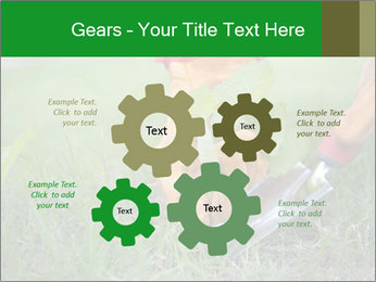 0000073012 PowerPoint Template - Slide 47