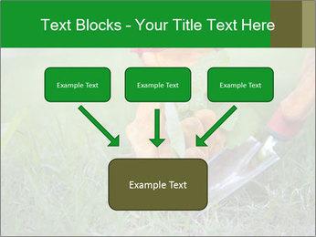 0000073012 PowerPoint Template - Slide 70