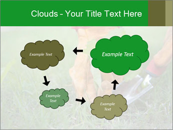 0000073012 PowerPoint Template - Slide 72
