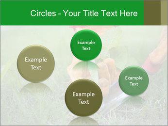 0000073012 PowerPoint Template - Slide 77