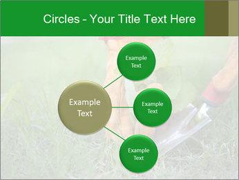 0000073012 PowerPoint Template - Slide 79