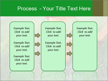 0000073012 PowerPoint Template - Slide 86