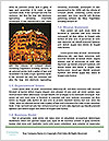 0000073015 Word Templates - Page 4