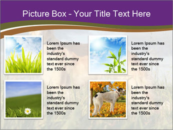 0000073017 PowerPoint Template - Slide 14
