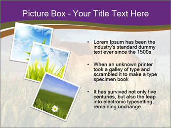 0000073017 PowerPoint Template - Slide 17