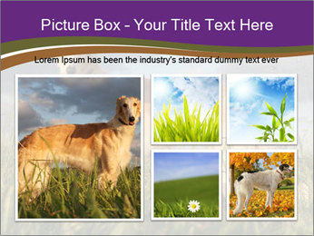 0000073017 PowerPoint Template - Slide 19