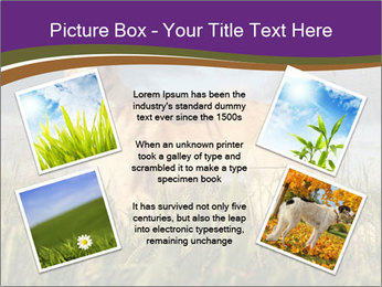 0000073017 PowerPoint Template - Slide 24
