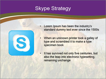 0000073017 PowerPoint Template - Slide 8