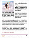 0000073023 Word Templates - Page 4