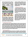 0000073030 Word Template - Page 4