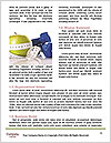 0000073034 Word Templates - Page 4