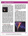0000073039 Word Template - Page 3