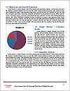 0000073040 Word Template - Page 7