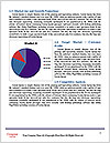 0000073041 Word Template - Page 7