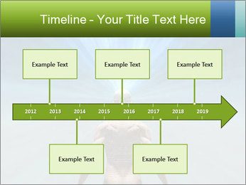 0000073044 PowerPoint Templates - Slide 28