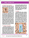 0000073049 Word Template - Page 3