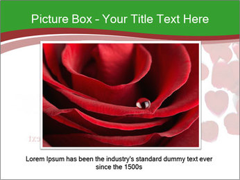0000073052 PowerPoint Template - Slide 15