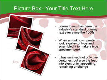 0000073052 PowerPoint Template - Slide 17