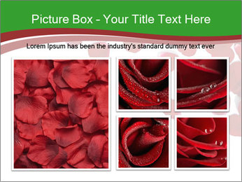 0000073052 PowerPoint Template - Slide 19