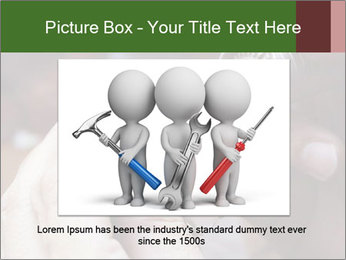 0000073054 PowerPoint Template - Slide 15