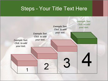 0000073054 PowerPoint Template - Slide 64