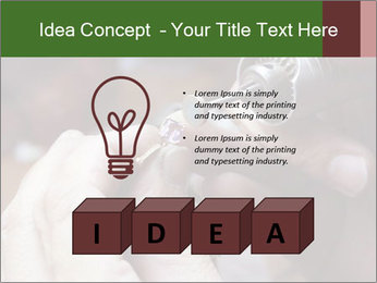 0000073054 PowerPoint Template - Slide 80