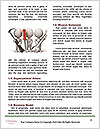 0000073054 Word Template - Page 4