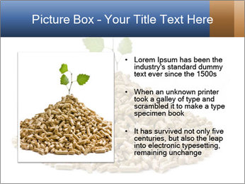 0000073057 PowerPoint Template - Slide 13