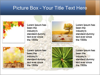 0000073057 PowerPoint Template - Slide 14