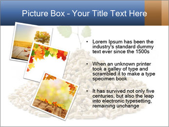 0000073057 PowerPoint Template - Slide 17