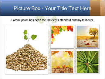 0000073057 PowerPoint Template - Slide 19