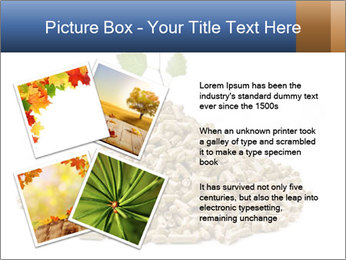 0000073057 PowerPoint Template - Slide 23