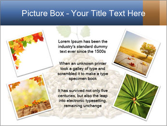 0000073057 PowerPoint Template - Slide 24