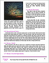 0000073066 Word Templates - Page 4