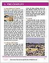 0000073068 Word Template - Page 3