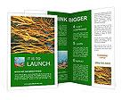0000073071 Brochure Templates