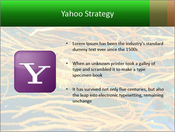 0000073071 PowerPoint Templates - Slide 11