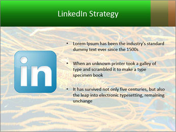 0000073071 PowerPoint Templates - Slide 12