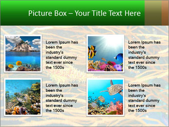 0000073071 PowerPoint Templates - Slide 14